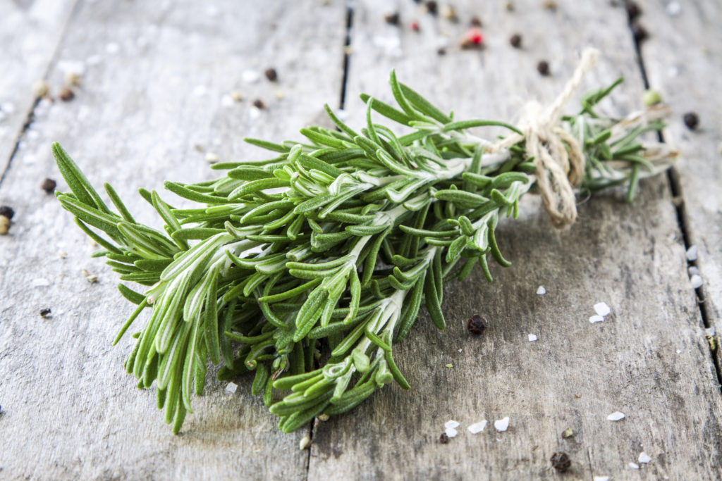 a bunch of fresh rosemary on a wooden background