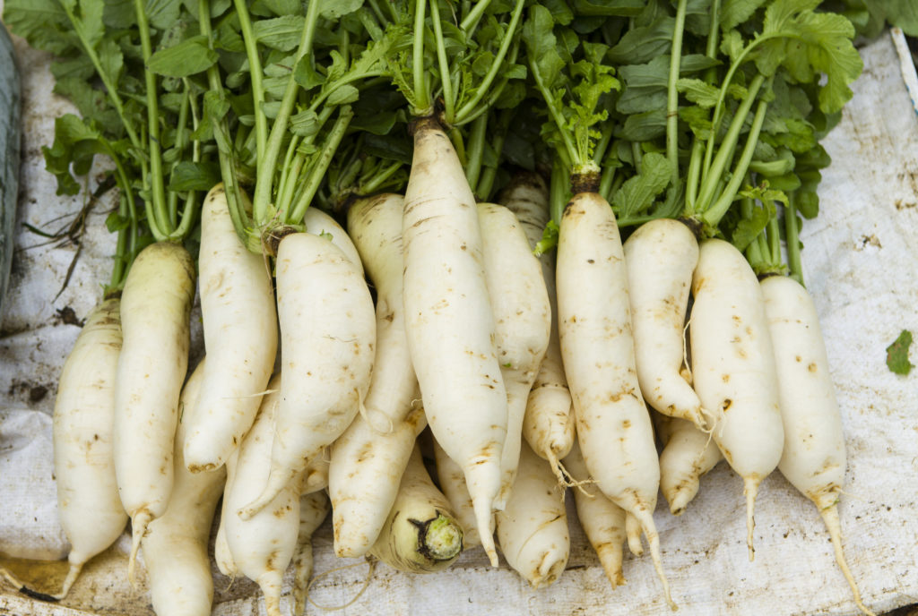Ripe white radish root in the street market in Vietnam