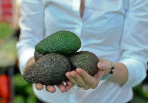 Авокадо на испанском рынке
