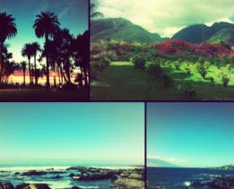 Фотографии с каникул