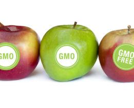 Яблоки без ГМО