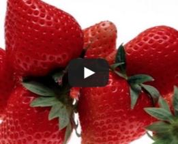 2015-04-29 15-23-27 Видео  Как очистить клубнику от листиков   Live Up! - Google Chrome