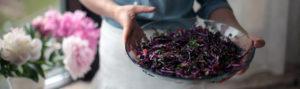Салат из красной капусты фото