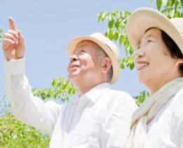 Счастливые японские долгожители