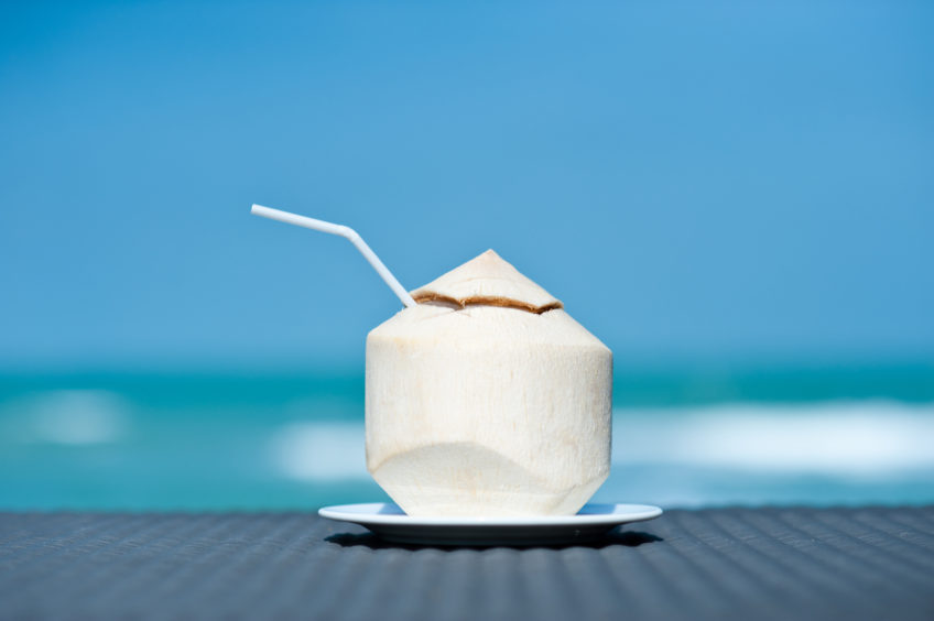 Coconut on the sea background