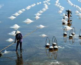 salt-production-1