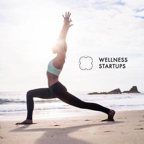 Wellness Startups: тренды ниши обсудят в Санкт-Петербурге
