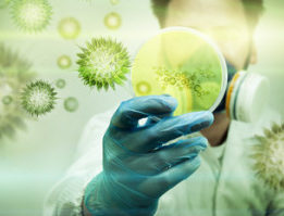 A scientist holding a Petri Dish with Virus and bacteria cells.