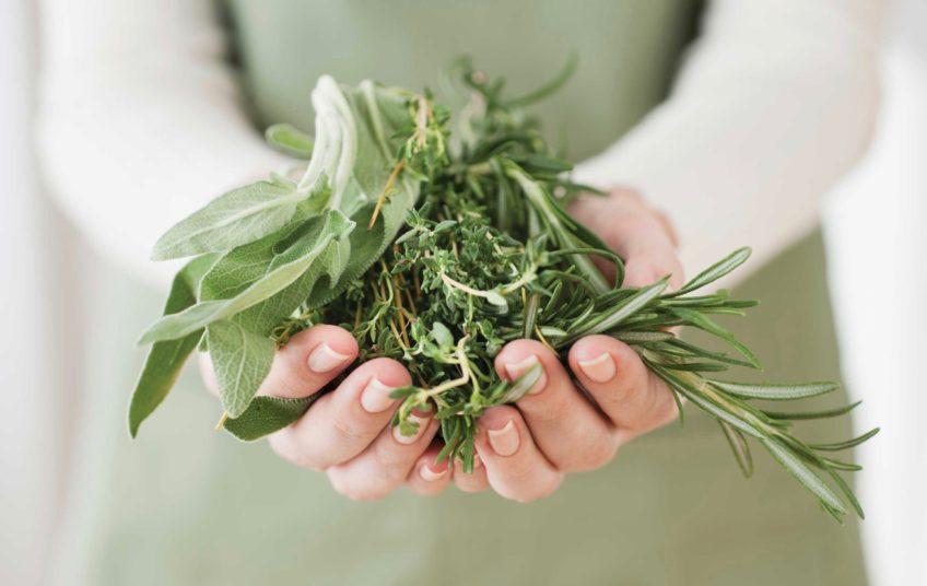Handful-Herbs 2